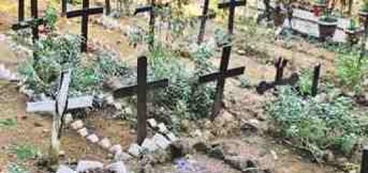 cemetery-343x290