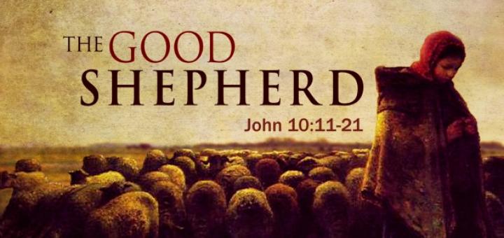 Good Shephard