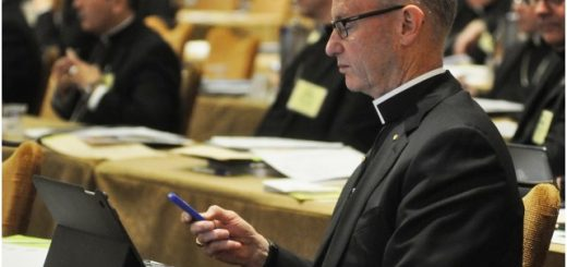 A Bishop Votes at the U.S. Conference of Catholic Bishops' annual assembly